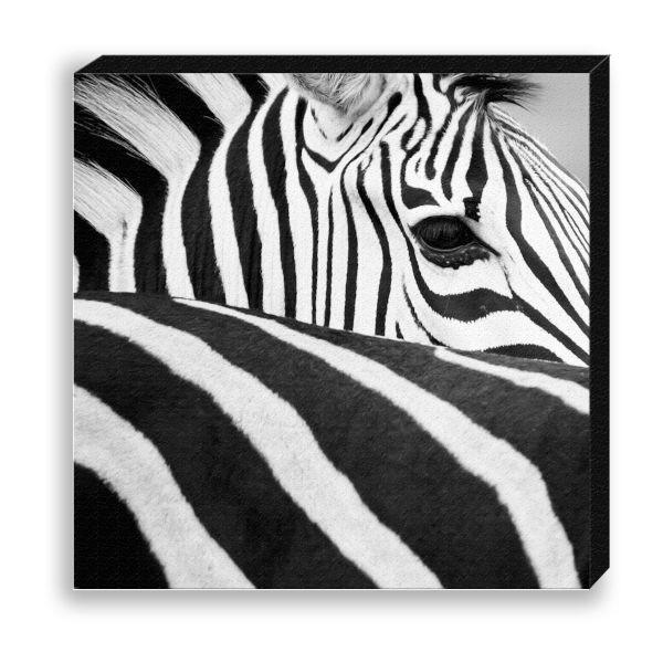 "Creative Nature Fotodruck ""Zebra Stripes"""